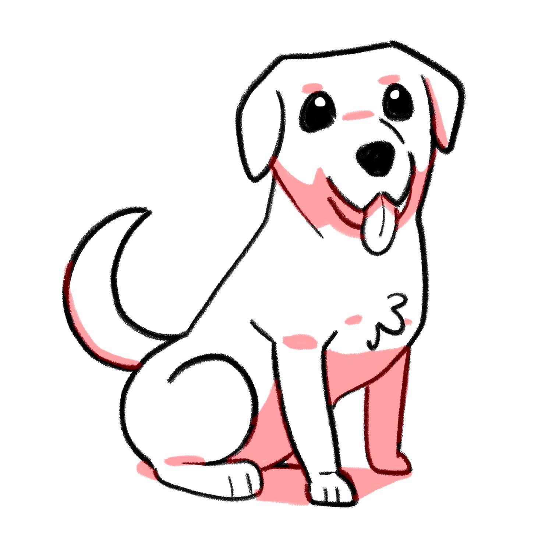 How to draw a Labrador step 07