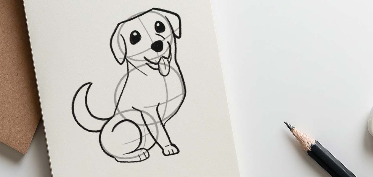 How To Draw A Labrador An Easy Step By Step Guide