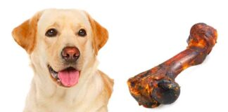smoked bones for dogs